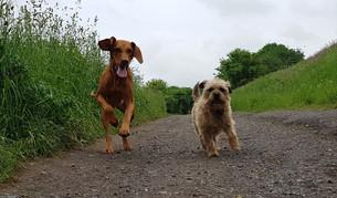 Myla & Ellie