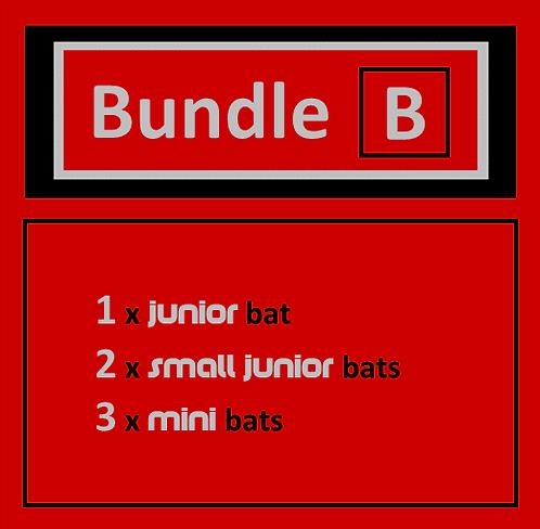 Bundle B (Younger)