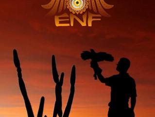 II Encontro Nordeste de Falcoaria acontece em Alagoas