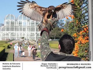II Curso de Manejo de Aves de Rapina e Introdução à Falcoaria