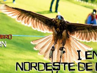 I Encontro Nordeste de Falcoaria acontece em outubro no Rio Grande do Norte