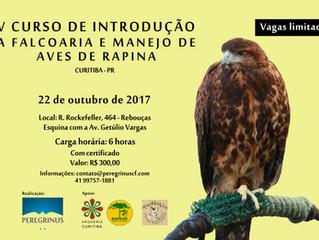 Curso para interessados em Falcoaria e aves de rapina