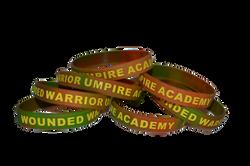 WWUA Wounded Warrior Umpire Academy Band