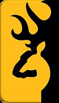 BC_Baseball_-_Browning_Gold_Logo_PNG_│_B