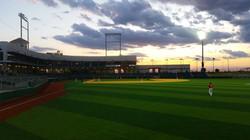 The Beauty of Baseball - 2019 PONY World