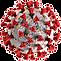 Coronavirus COVID-19 PNG 1.0.png