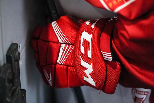 hockey-2744905.jpg