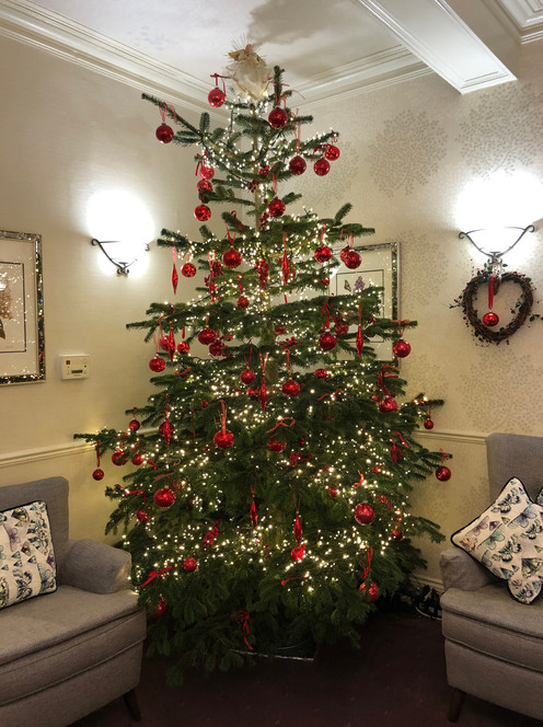christmas tree IMG_0977.jpg