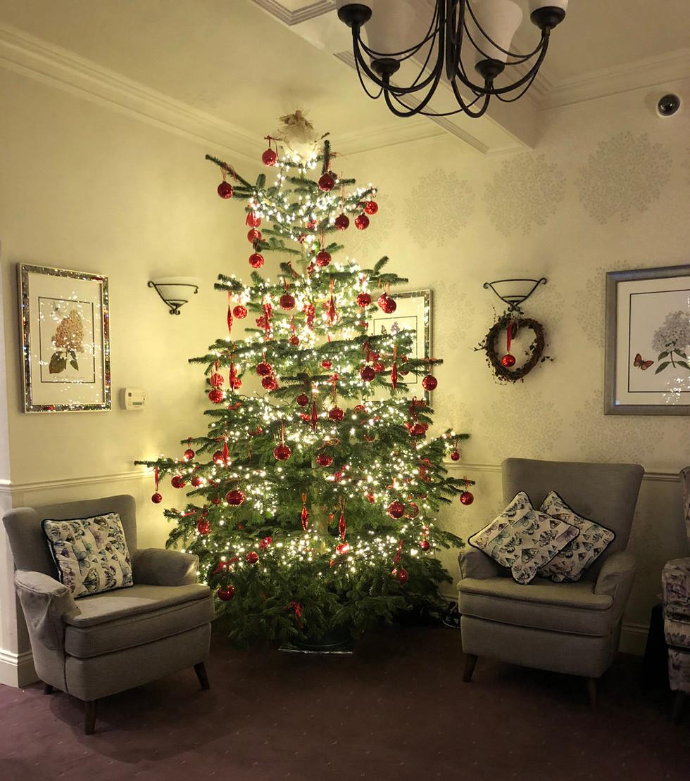 christmas tree IMG_0981.jpg