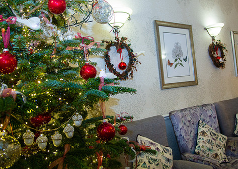 Abbeydale christmas-7181.jpg
