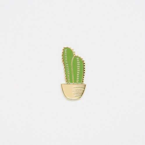 Shelf Life Pin Column Cactus in Apricot Pot