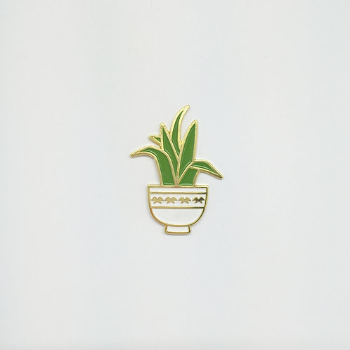 Shelf Life Pin Astelia White Pot