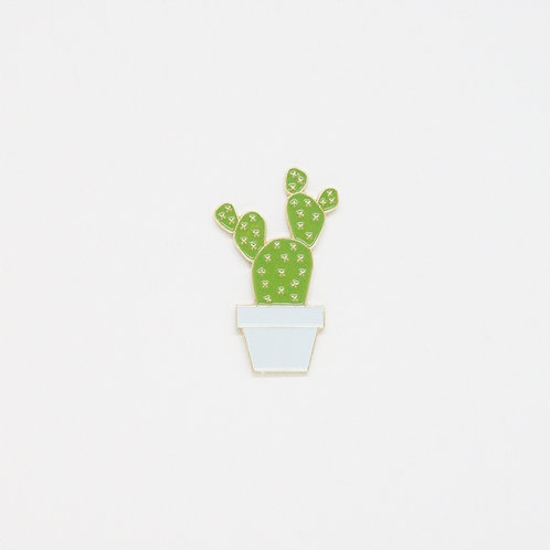 Shelf Life Pin Teddy Cactus in Sky Blue Pot