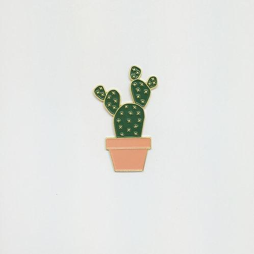 Shelf Life Pin Teddy Cactus in Peach Pot