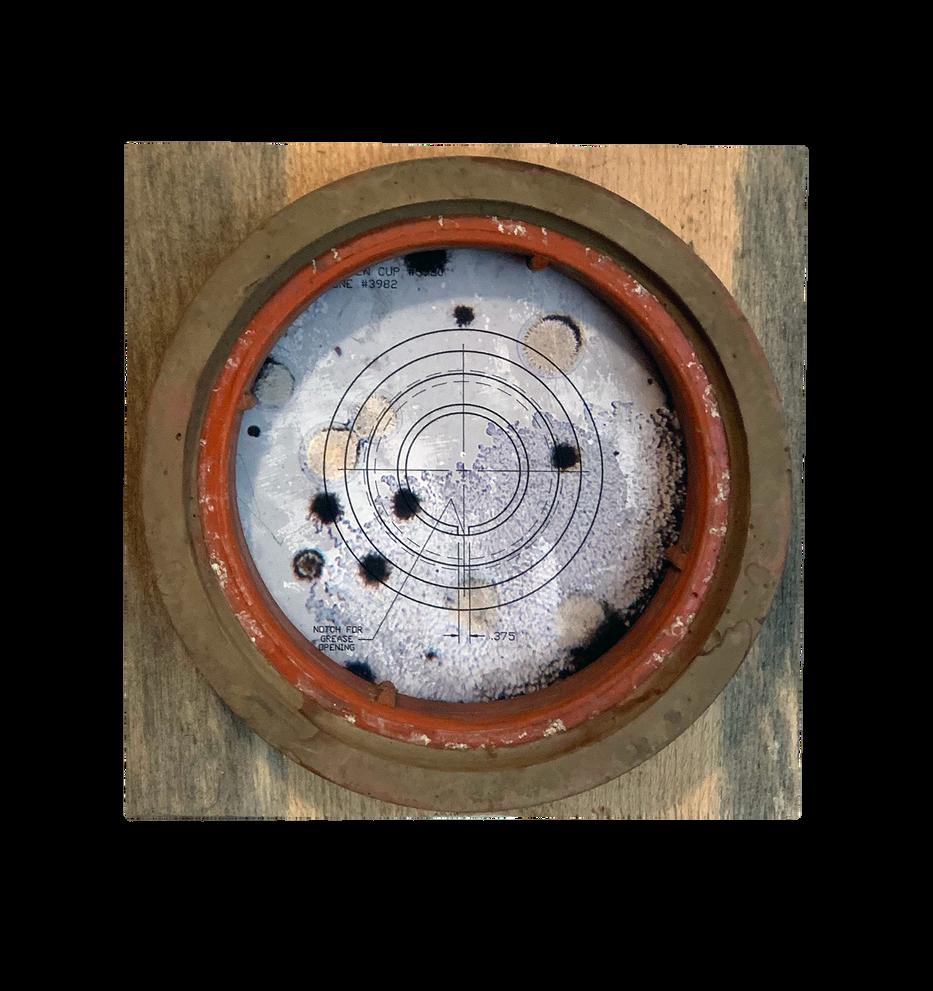 Bacteria and Bullseye