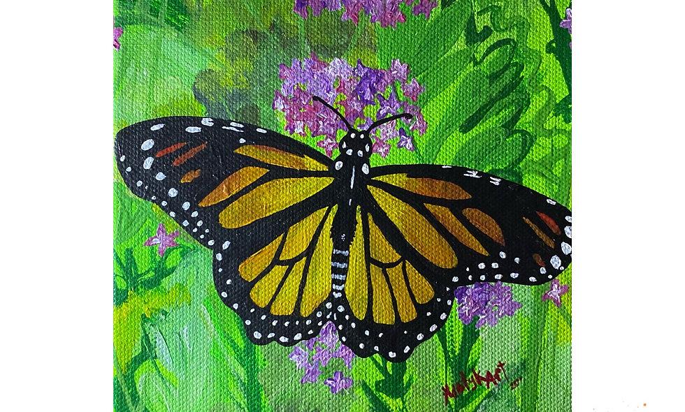 New Beginnings Monarch
