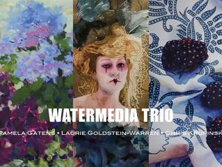 WaterMedia Trio Exhibition at The Art Store