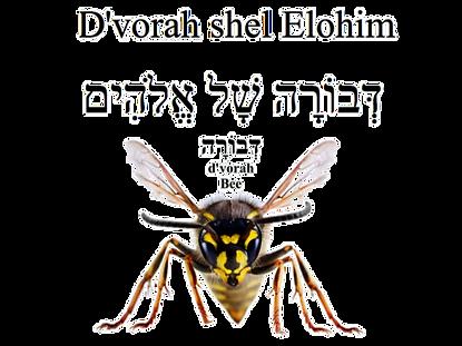 Shelelohim
