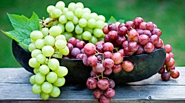 grapes_625x350_61443376353.jpg