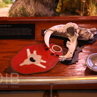 Smilodon Bite- The Natural History Museum at the Toledo Zoo