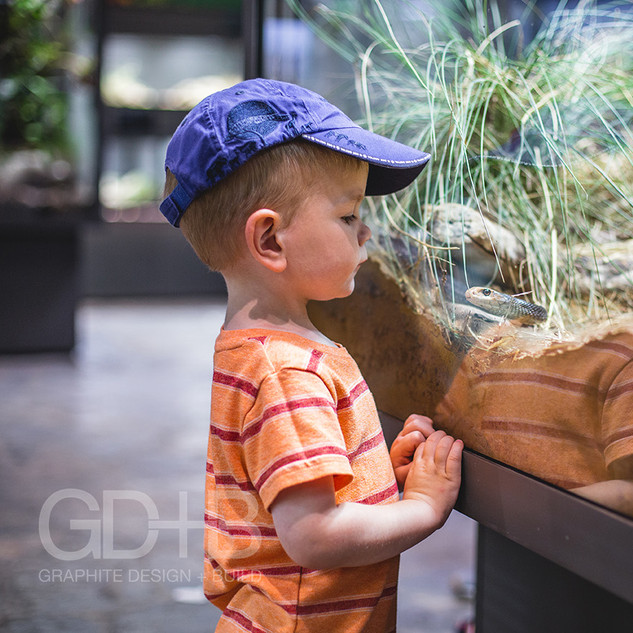 Interactive Live Animal Exhibits- The Natural History Museum at the Toledo Zoo