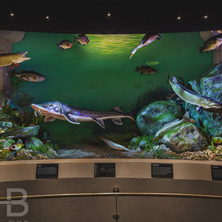 PROMEDICA MUSEUM OF NATURAL HISTORY AT THE TOLEDO ZOO