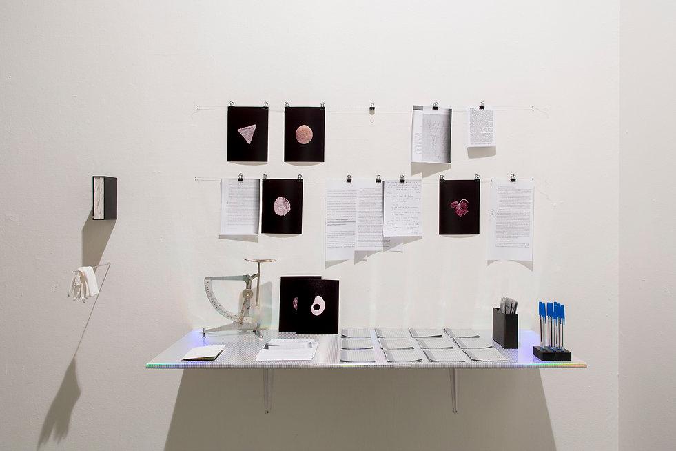 Nanna Hougaard l installation art