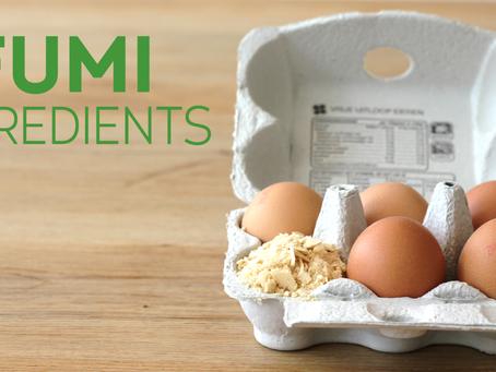 FUMI Ingredients ontvangt investering van een half miljoen euro voor natuurlijke eiwitvervangers