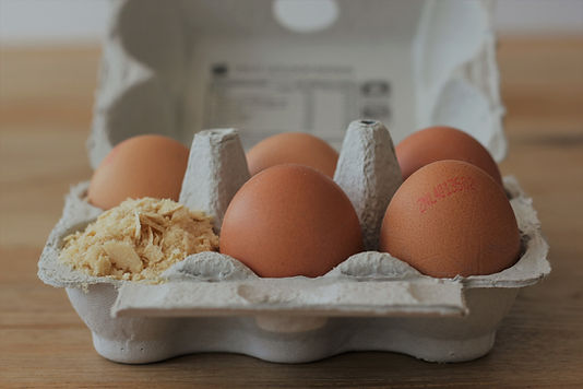 eggs with yeast protein powder next to i
