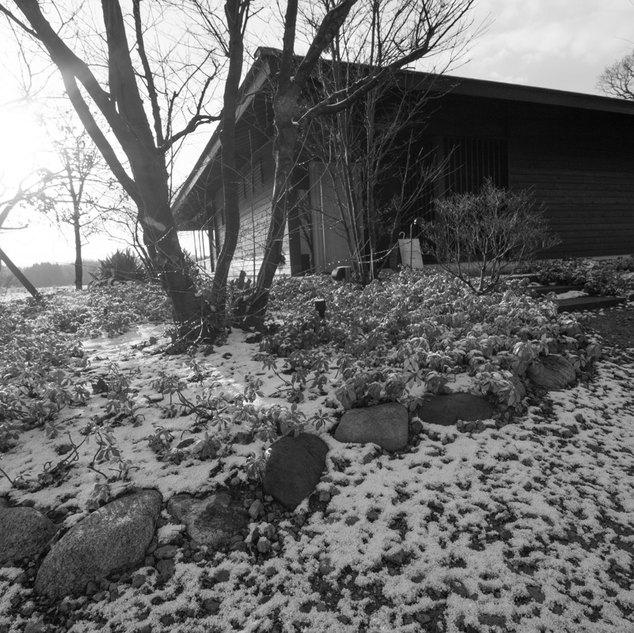 入口に積もった雪