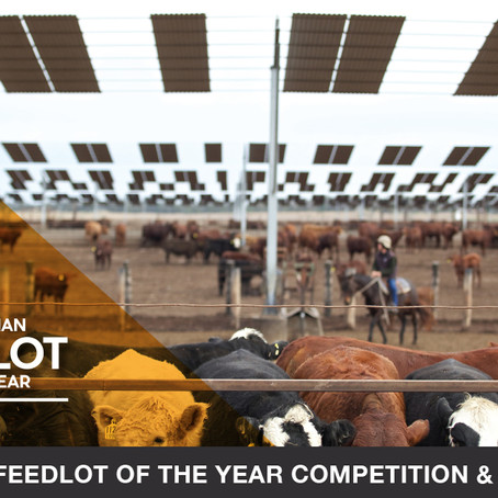 Search is on for Feedlot of the Year 2021