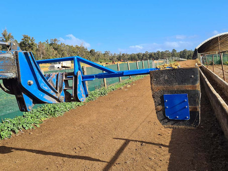 The Paradise Beef 'Feed Bunk Sweeper' Innovation
