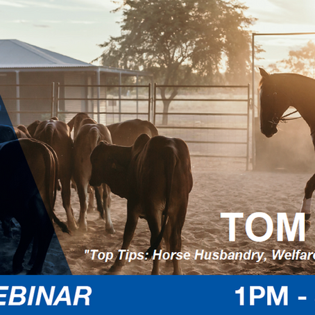 ALFA launches first POP-UP! Webinar with Tom Curtain