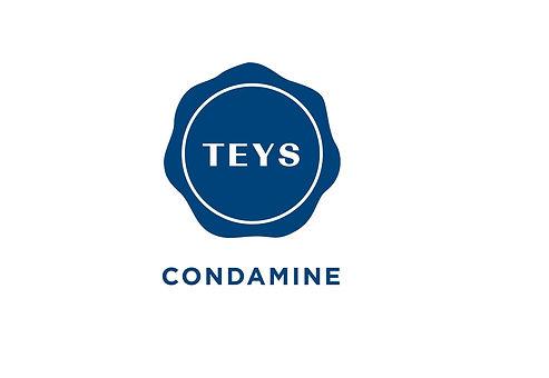 Teys Condamine_web.jpg