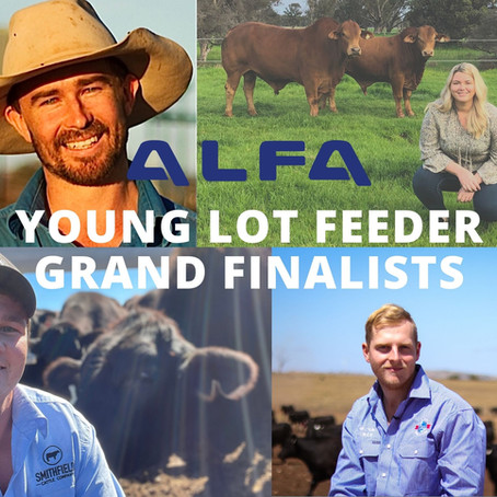 Competition heats up in Young Lot Feeder Award