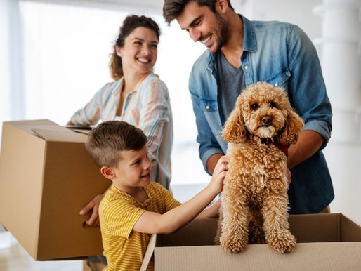 Moving With Pets: How to Help Your Pets Adjust to a Move