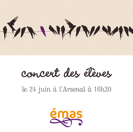 Concert-eleves-affiches2011.png