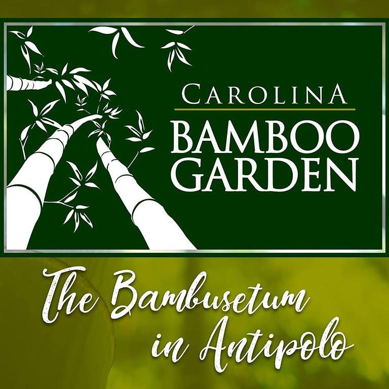 21st Bamboo Training Seminar