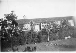 Blackthorpe Camp 3