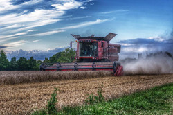 Tractor on field by Moz Moret