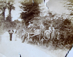 Horse and cart on lane in Rougham