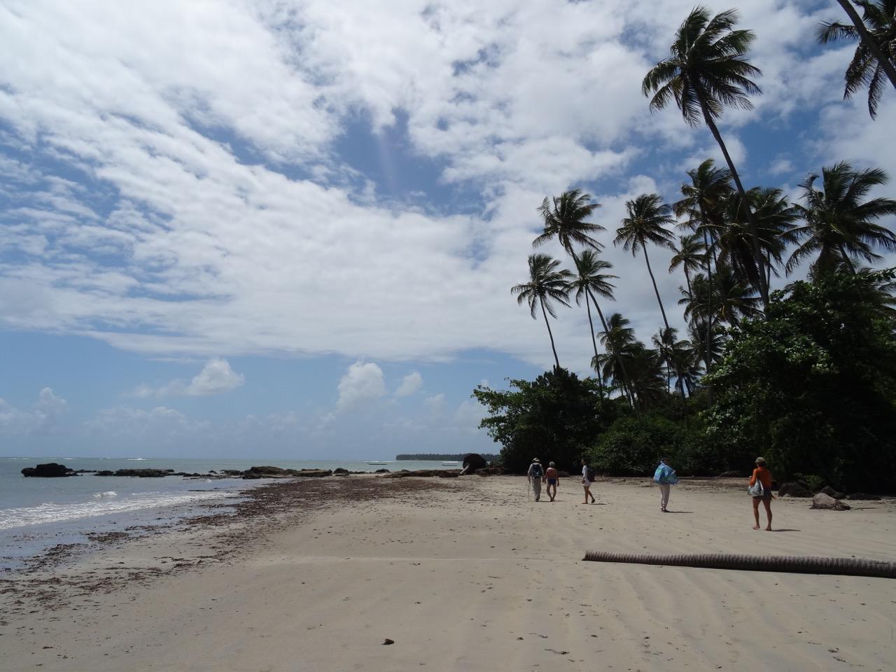 Randonnée le long de la plage
