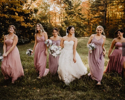 bridal party in meadow