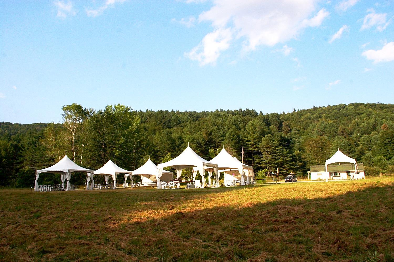 Wedding in the Fields