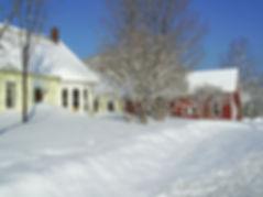 06-Winter-04_edited.jpg