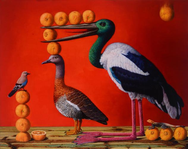 Birds' Hubbub: Oranges