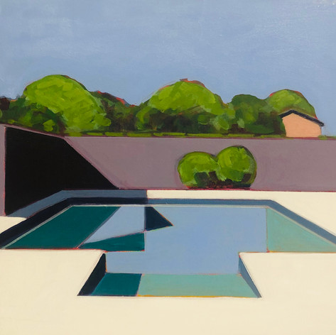 Geometric Pool With Fence