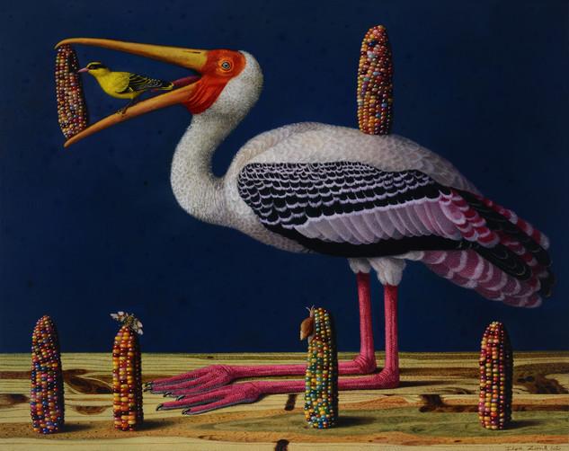 Birds' Hubbub: Corns
