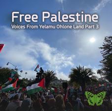 Free Palestine! Part 3