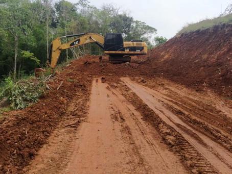 Órgãos ambientais aplicam multa de mais de R$ 15 milhões por desmatamento ilegal no Paraná